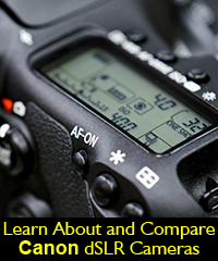Canon camera dslr choose compare vs review
