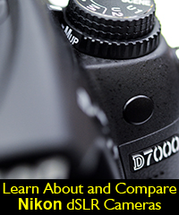 Nikon camera dslr choose compare vs review