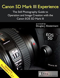 Canon 5D mark iii Experience mk 3 EOS book ebook guide manual dummies how to tips tricks firmware update 1.2.1