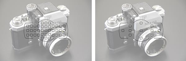 Nikon-D600-viewfinder-with-F-39 copy
