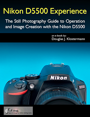 Nikon D5500 book manual guide tips tricks how to set up quick start tutorial recommend setting