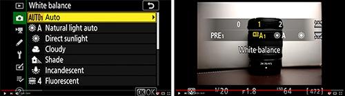 Nikon Z 7 Z 6 menu setup